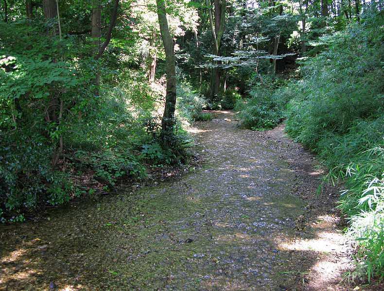 妙音沢緑地保全地区として管理されている